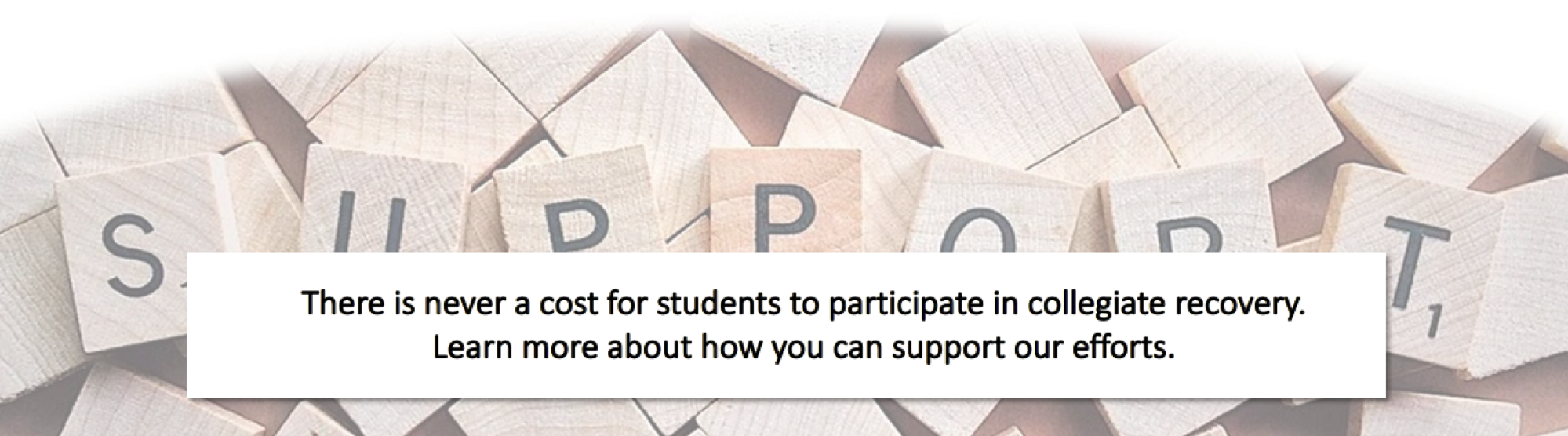 There is never a cost for students to participate in collegiate recovery.  Learn more about how you can support our efforts.