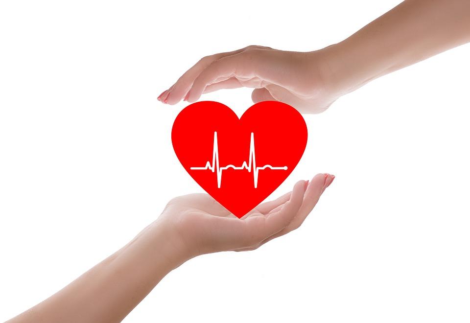 Hands holding heart with EKG inside image