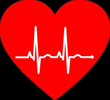 Heart with a Lifeline Inside Image