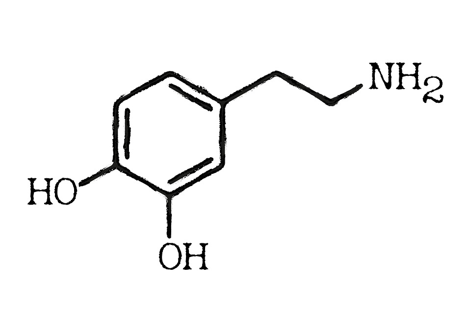 Dopamine Chemical Structure Image