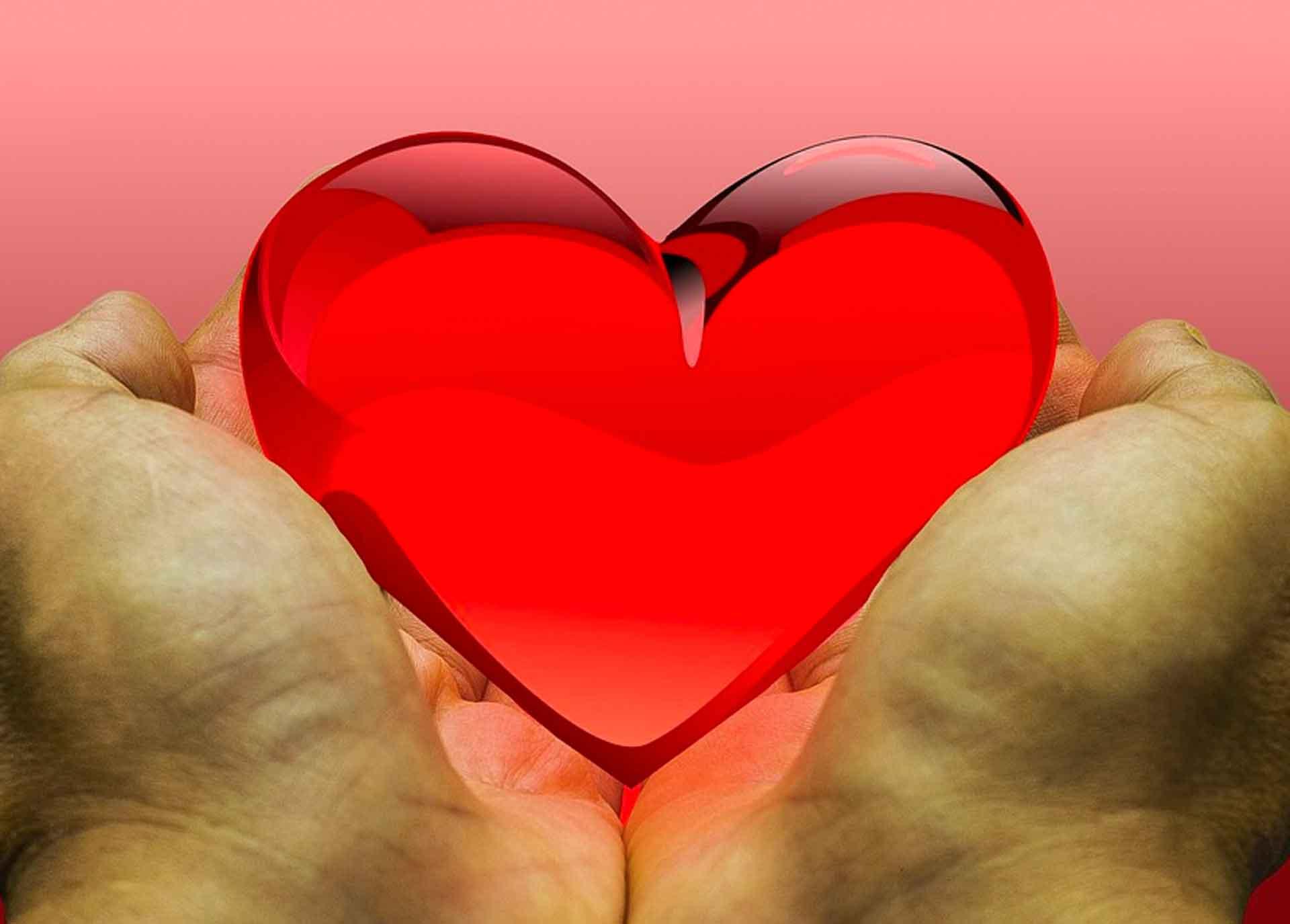 Heart held in two hands